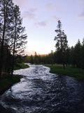 River in Yellowstone national park. Travel, nature, landscape, forest Stock Photo