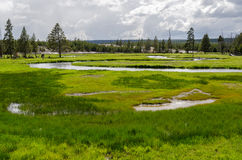 River in Yellowstone Stock Image