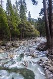 River in Yosemite National Park. Beautiful river that flows from a nearby waterfall, in Yosemite National Park Royalty Free Stock Photography
