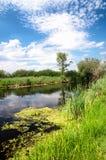 River Zala at Lake Balaton, Hungary Stock Photo