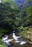 River in Zhangjiajie royalty free stock photo