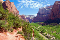 River through Zion Stock Photos