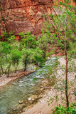 River in Zion Canyon Royalty Free Stock Photos