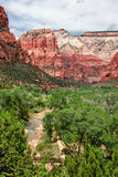 River in Zion Canyon Stock Image