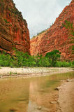 River through Zion Stock Images