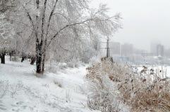Riverbank, πάρκο, δέντρα στο χιόνι, σκάφος, σύγχρονη αστική αρχιτεκτονική Στοκ φωτογραφία με δικαίωμα ελεύθερης χρήσης