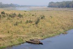 Riverbank σε Chitwan στοκ εικόνες