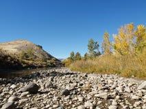 riverbank каменистый Стоковая Фотография RF