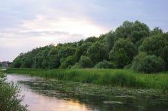 Riverbank zdjęcie royalty free