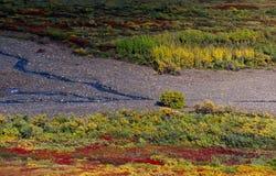 Riverbank immagini stock