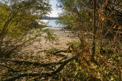 riverbank Lizenzfreie Stockbilder