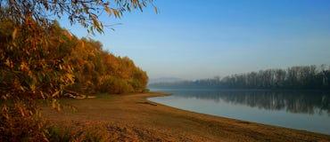 Dog On Danube Riverbank Stock Photo - Imag