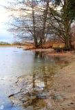 Riverbank con el borde fino del hielo Fotografía de archivo libre de regalías