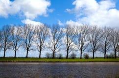 Riverbank con los árboles fotos de archivo