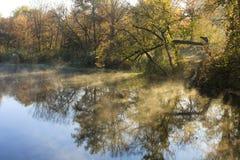 A riverbank at dawn in autumn.  Stock Photos