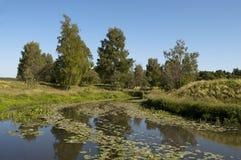 Riverbank del fiume tranquillo nell'ora legale immagine stock libera da diritti