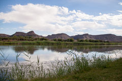 Riverbank del río anaranjado, Suráfrica imagenes de archivo