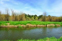 Riverbank di color salmone dell'insenatura Fotografia Stock Libera da Diritti