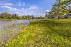 Riverbank ecológico fotografía de archivo