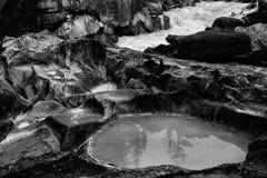 Riverbank erosionado que golpea el río del caballo con el pie foto de archivo
