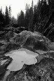 Riverbank erosionado que golpea el río del caballo con el pie imagenes de archivo