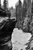 Riverbank erosionado que golpea el río del caballo con el pie imagen de archivo libre de regalías