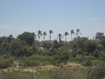 Riverbank krajobraz Zdjęcia Stock
