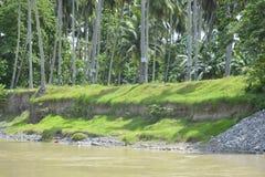 Riverbank krajobraz wzdłuż Bulatukan rzeki, Tamlangon, Matanao, Davao Del Sura, Filipiny fotografia stock