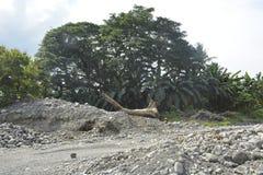 Riverbank Mal rzeka, Matanao, Davao Del Sura, Filipiny obraz royalty free