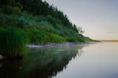 Riverbank met groene installaties wordt overwoekerd die royalty-vrije stock foto