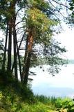 Riverbank mit Bäumen an einem wunderbaren Sommertag lizenzfreies stockfoto
