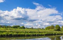 Riverbank Nidda lato Obrazy Royalty Free