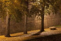 Riverbank of the Seine, Paris Stock Photography