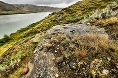 Riverbank South Saskatchewan River Royalty Free Stock Photo