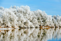 Riverbank Winter Landscape royalty free stock photography