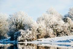 Riverbank Winter Landscape royalty free stock photo