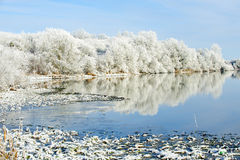 Riverbank Winter Landscape Stock Images