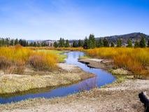 Riverbanks na cor do verão Fotos de Stock Royalty Free