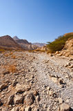 Riverbed Stock Image
