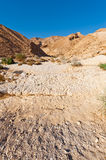 Riverbed Royalty Free Stock Image
