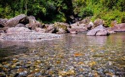 riverbed Royaltyfria Bilder