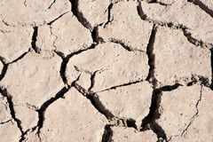 Riverbed in drought Royalty Free Stock Image