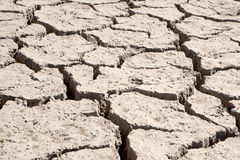 Riverbed in drought Stock Photography