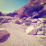 Riverbed Royalty Free Stock Photo
