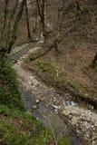 Riverbed Halna rzeka w Kaukaz górach Rosja Sochi Zdjęcie Royalty Free