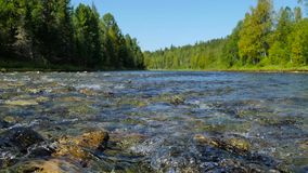 Riverbed at low point stock video footage