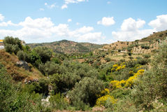 Riverbed in mountains, Andalusia. Royalty Free Stock Photography