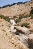 Riverbed Nahal Arugot w Ein Gedi, Izrael Obraz Royalty Free
