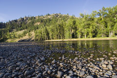 Riverbed with pebbles in the evening sun. Kettle river, british columbia, canada - adobe RGB Royalty Free Stock Photos