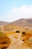Riverbed seco Foto de Stock